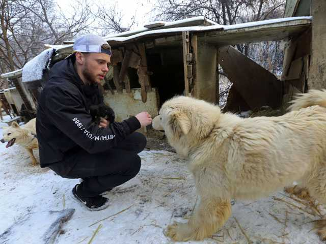 'Heartbroken' Kenworthy Visits South Korean Dog Meat Farm