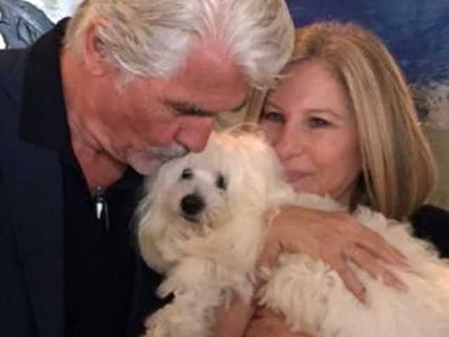 PopUps: Barbra Streisand Says Her Dogs are Clones