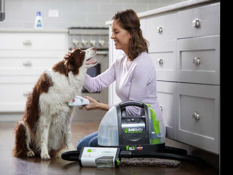 Pet Project: Gear & Gadgets for Cleaning a Dirty Dog