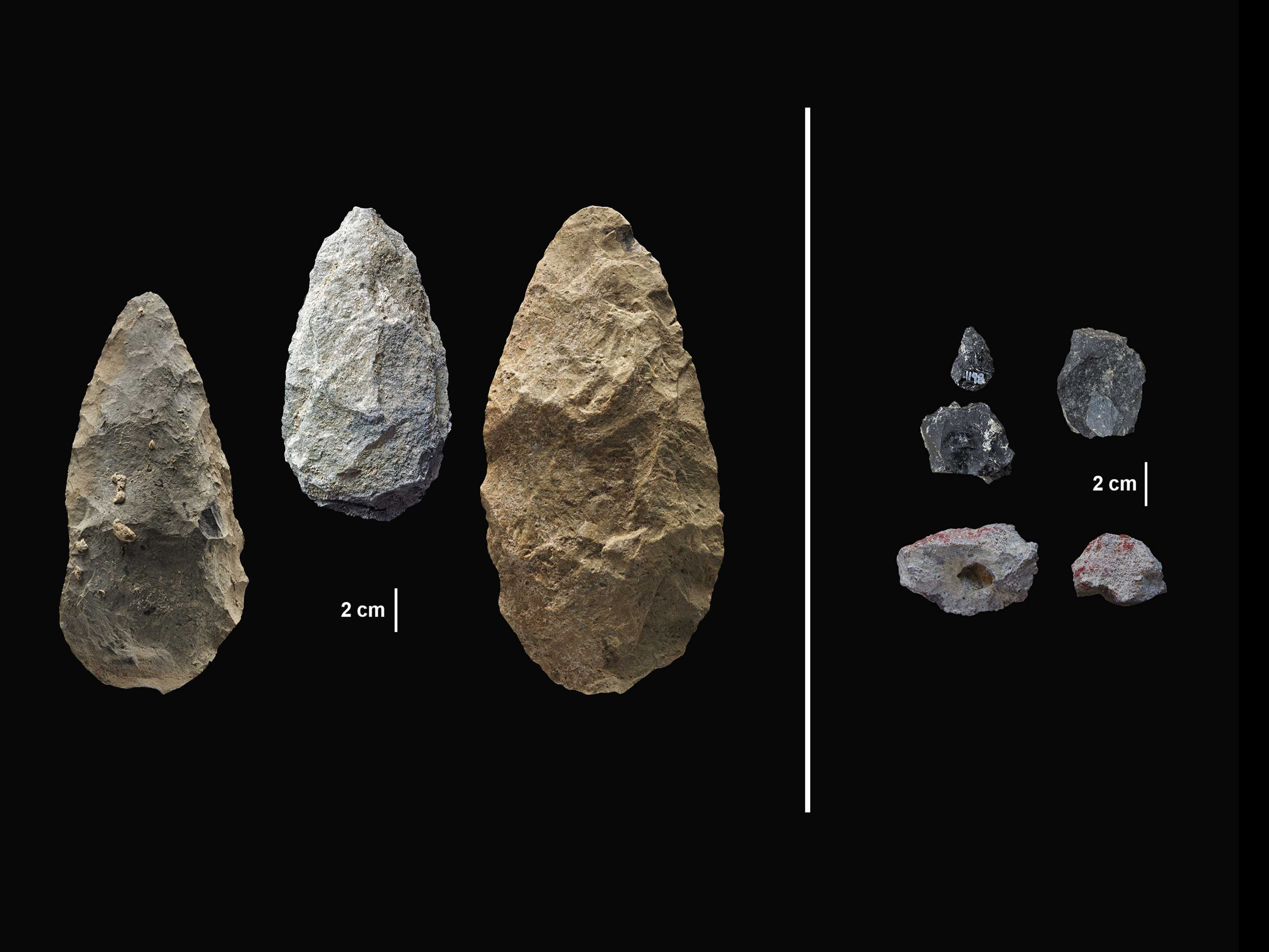 Stone Tools from Kenya Give Early Glimpse of Human Behavior
