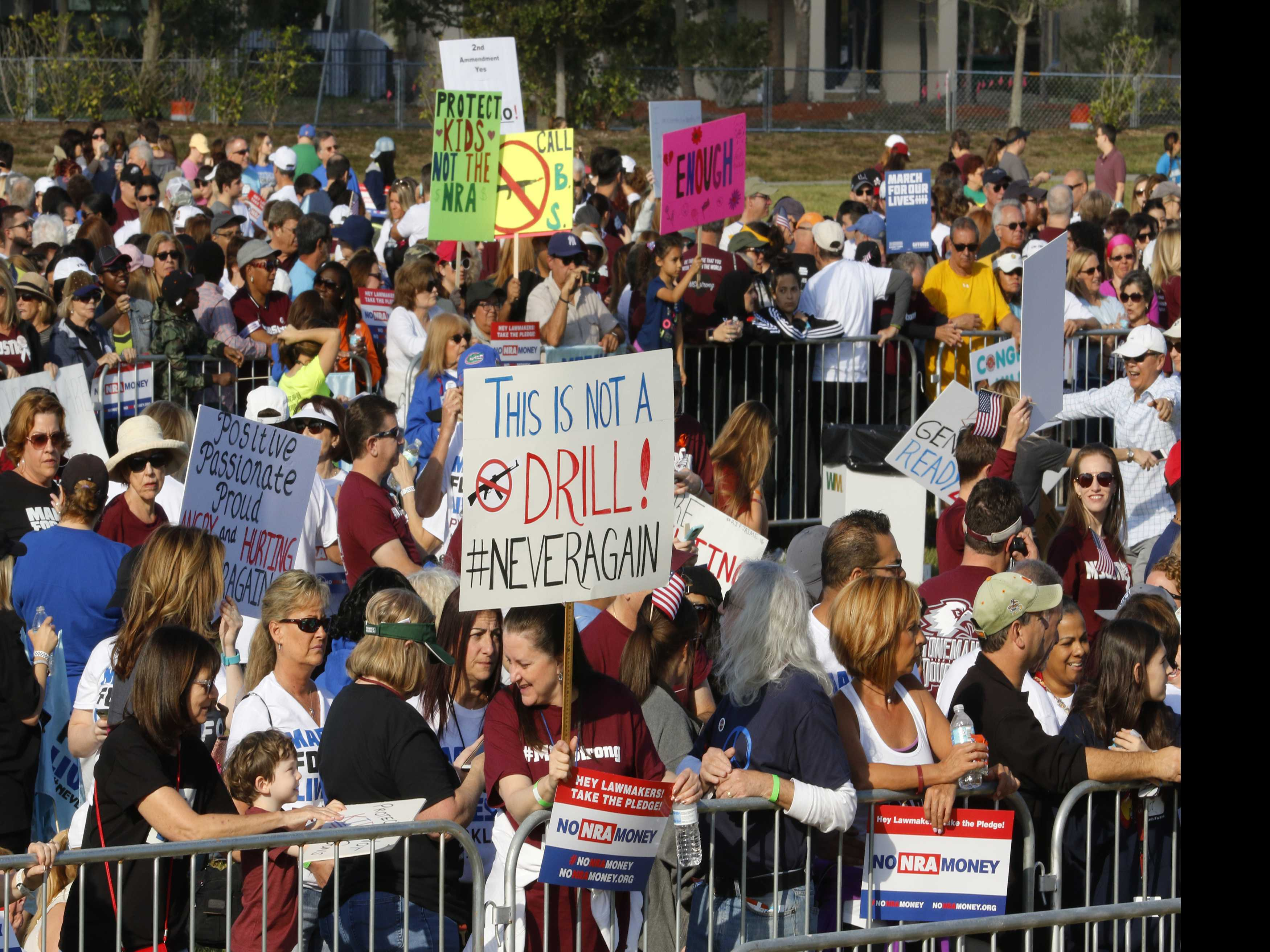 Thousands Gather to March for Gun Control and Spark Activism