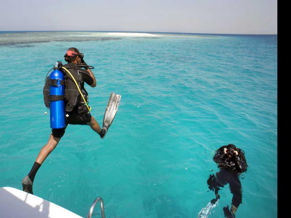 Saudi Arabia's Red Sea Divers Explore Freedoms Off the Coast