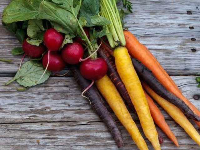 Rebel Farmers Create New Organic Food Label