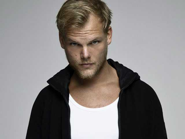 Avicii's Family Releases 2nd Statement About Late DJ