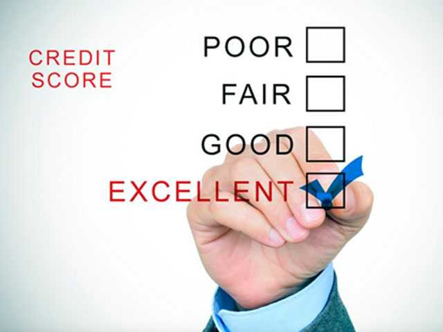 Don't Let Your Credit Die of Neglect