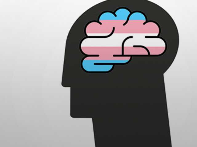 Brain Scans Reveal Trans Brains