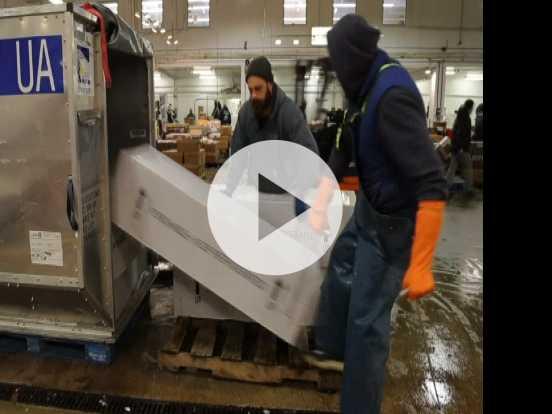 Untrue Info In Local Tuna Sourcing