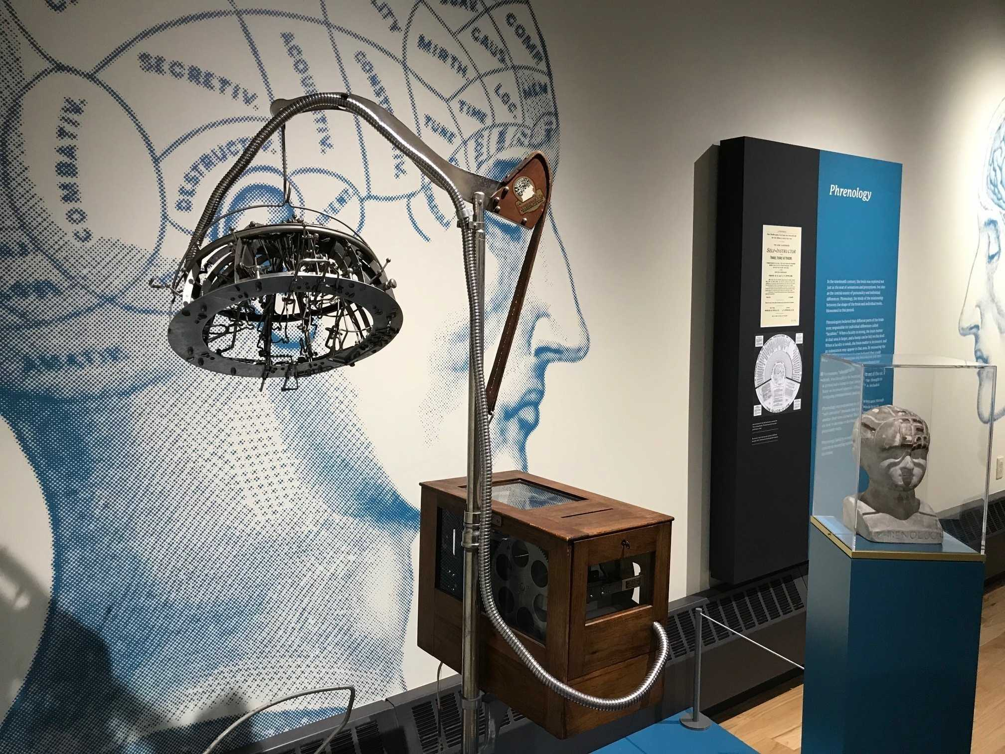 Psychology Museum Explores What Makes Us Human