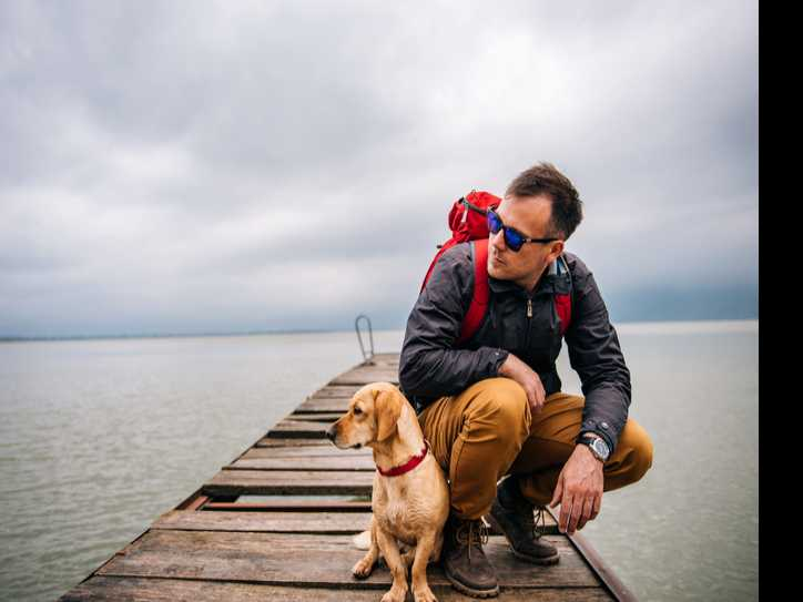 7 Tips for Camping with Canines