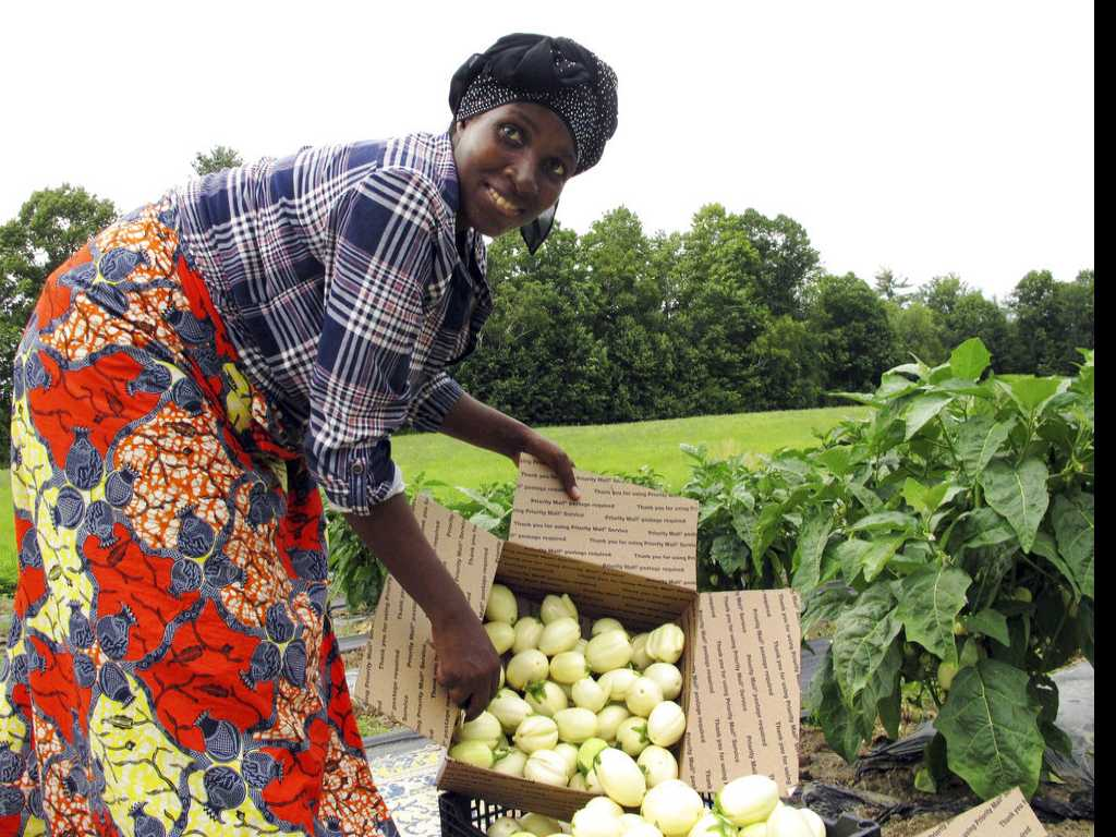 African Refugee Grows Familiar Crops in Vermont