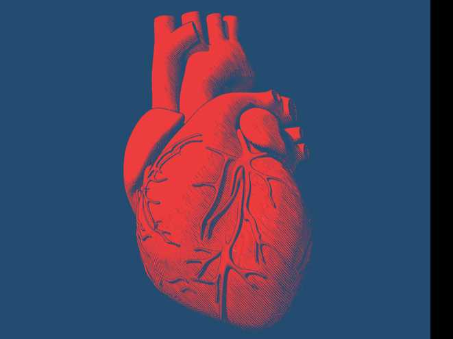 Multi-Gene Test May Detect Heart Disease Risk and More