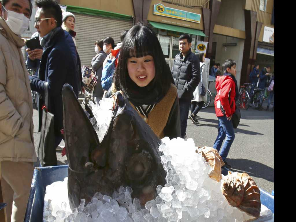 Tokyo's Iconic Fish Market Set to Re-Open