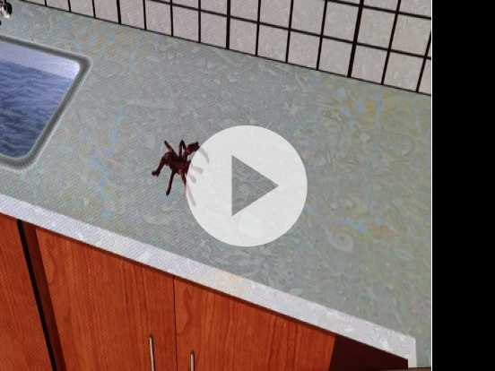 Tackling Spider Fear and Other Phobias with VR