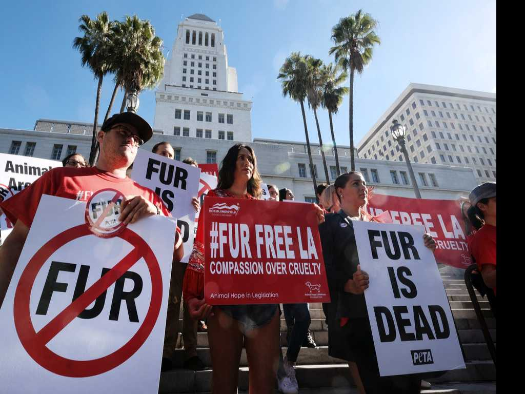 Los Angeles Takes Step Toward Banning Fur Products