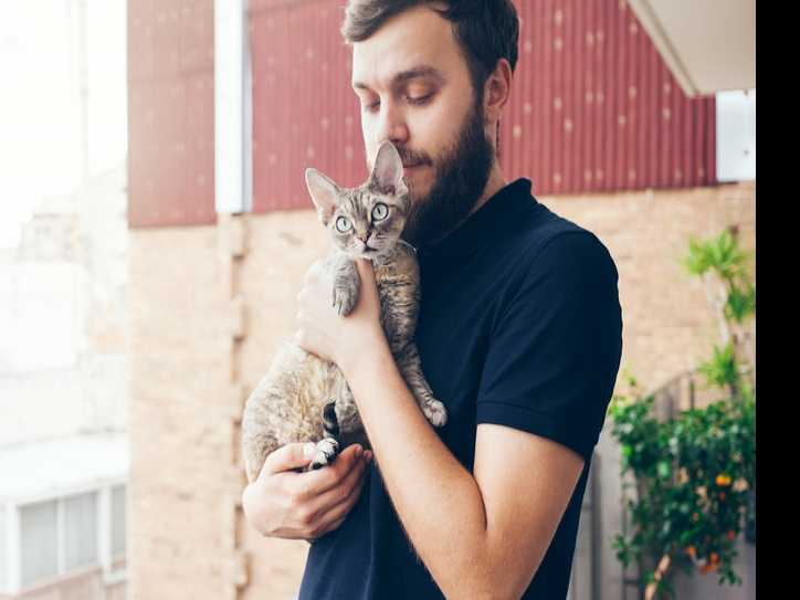 How Much Do Cat Owners Love Their Pets? Survey Says a LOT