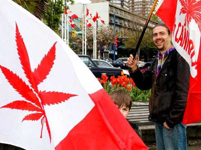 Canada Now World's Largest Legal Marijuana Marketplace