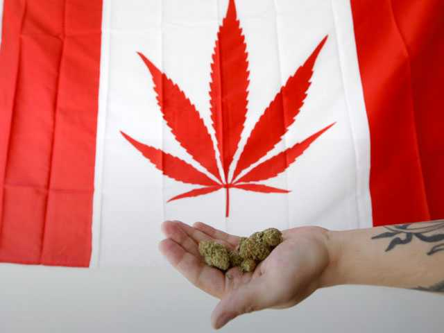 After Canada Legalizes Pot, Industry Eyes Rest of the World