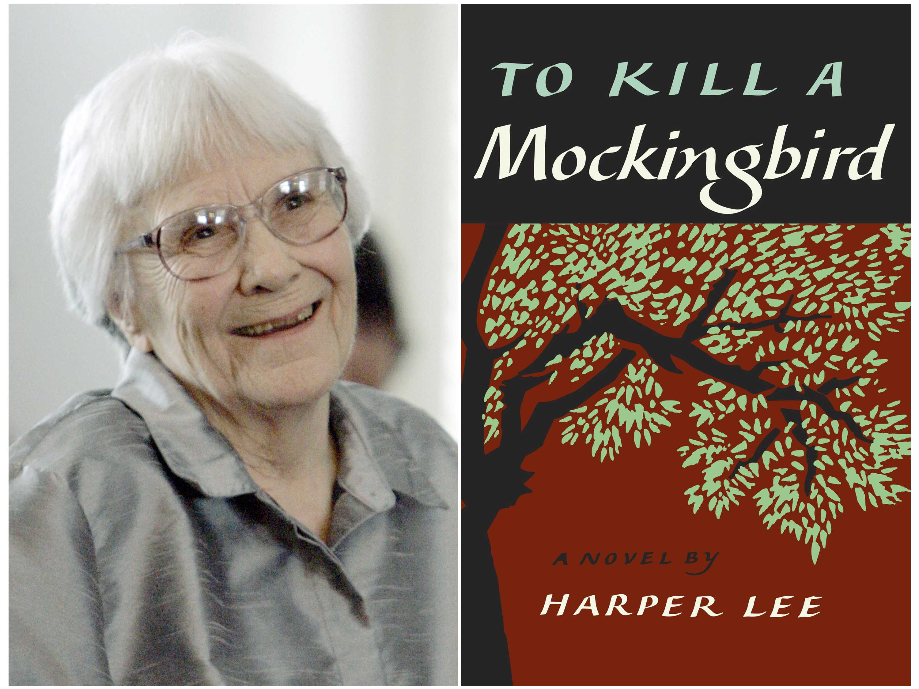 'Mockingbird' Chosen as America's Best-Loved Novel in Vote