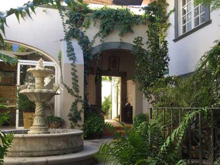 Discovering Guanajuato's Courtyard Gardens