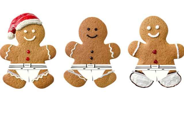 Watch: Fox News Contributor Tells Tucker Carlson it's 'Obviously' 'Gingerbread MEN'