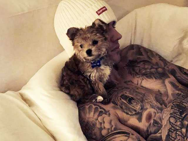 PopUps: Justin Bieber Shows Off New Puppy