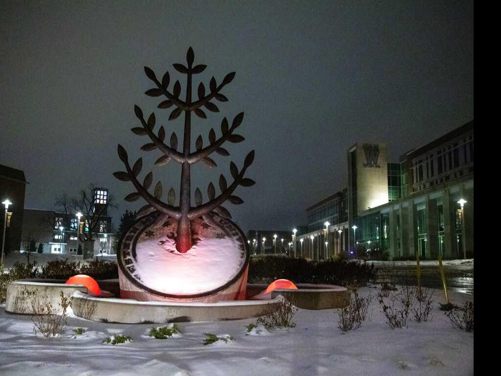 Icy Weather Prompts Shutdown of Detroit Metropolitan Airport