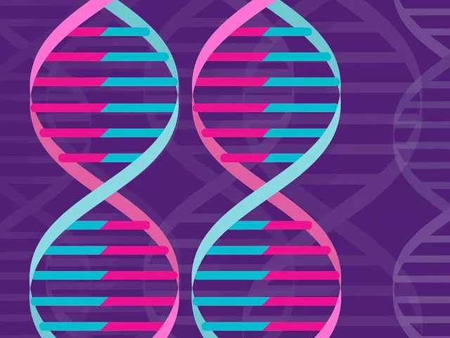 Tests Suggest Scientists Achieved 1st 'in Body' Gene Editing