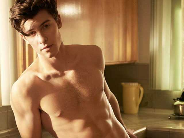 Shawn Mendes Says Speculating About His Sexuality is 'Hurtful'