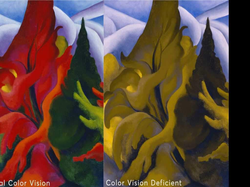 Georgia O'Keeffe Museum Tackles Visitors' Color Blindness