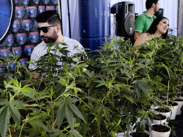 California Bill Encourages Banks to Work with Pot Businesses