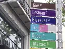 Watch: NYC's Gay Street Renamed to More Inclusive Acceptance Street for Pride