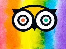 TripAdvisor Uses A Rainbow Medley to Tell 'Straight Pride' Group to Cease and Desist