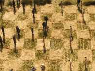 Auschwitz Museum Upset at Scene in Amazon Series 'Hunters'