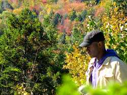 LGBTQ Leaf Peeping: 5 Destinations to Take in Fall