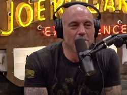 Watch: Queer People Are the Most Vicious at Cancel Culture, Says Joe Rogan