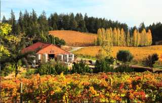 Healdsburg offers a luxurious fall escape