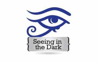 Seeing in the Dark on hiatus