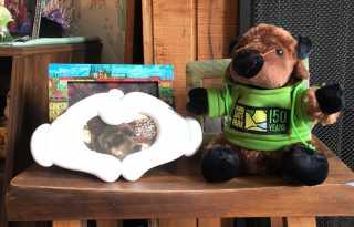 News Briefs: Buy a plush bison, support Golden Gate Park